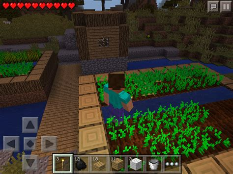 How Does Farming Work in Minecraft Pocket Edition