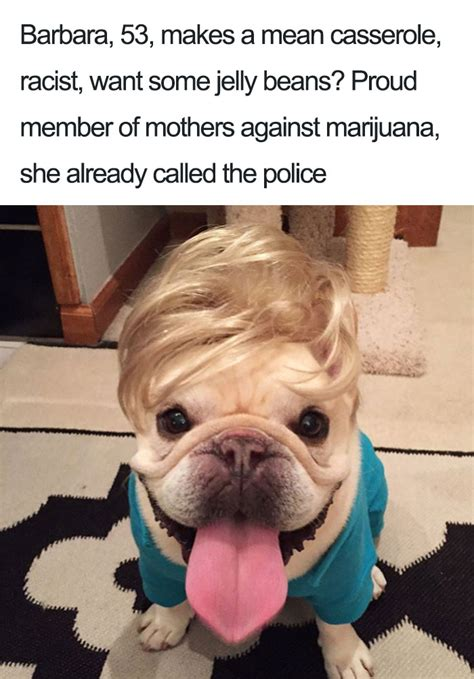 15 Dog Bios That Will Definitely Remind You Of Someone You