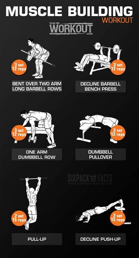Workouts, Exercises & More   Muscle building workouts