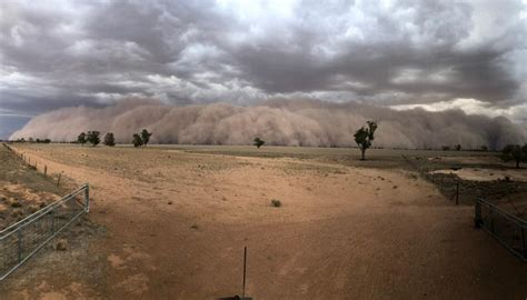 Video shows dust storm 'wreaking havoc' on struggling