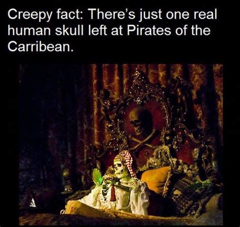 Ten Weird Facts About Disney | The Real Disney Stories and